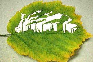 Marketing verde, se puede ser ecológico y productivo.